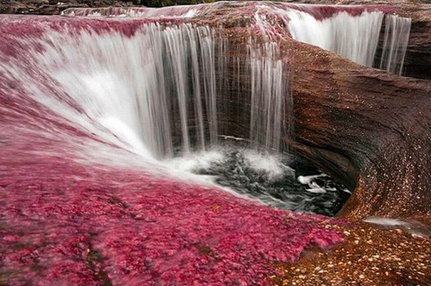 Кристальная река Каньо Кристалес