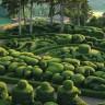 Восхитительные сады Маркессак (11 фото)
