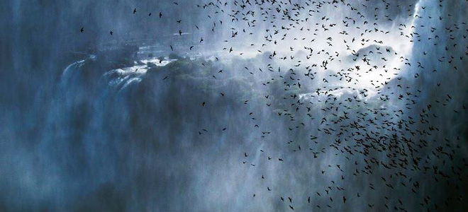 Водопад Игуасу на границе Бразилии и Аргентины (9 фото)