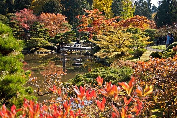 Японский сад в Сиэтле