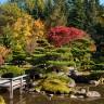 Японский сад по-американски