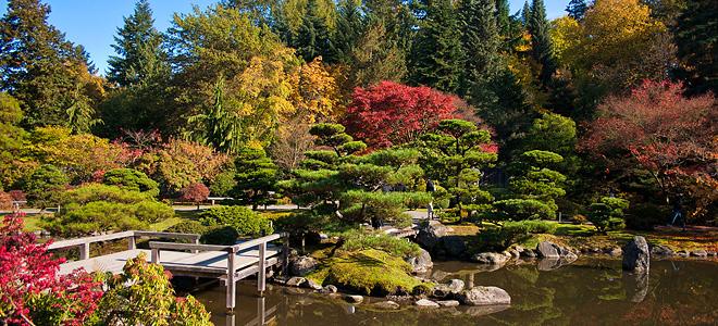 Японский сад по-американски (19 фото)