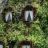 Сказочный отель «Волшебная гора» (13 фото)