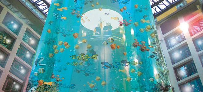 АкваДом — самый большой цилиндрический аквариум (13 фото)