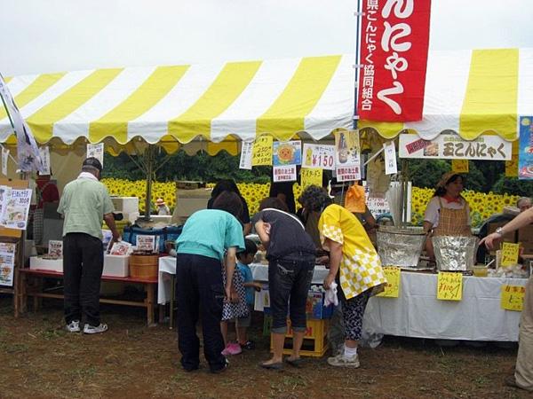 Фестиваль подсолнухов Himawari Matsuri в Заме