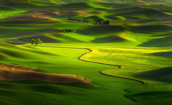 Изумрудные холмы региона Палуз