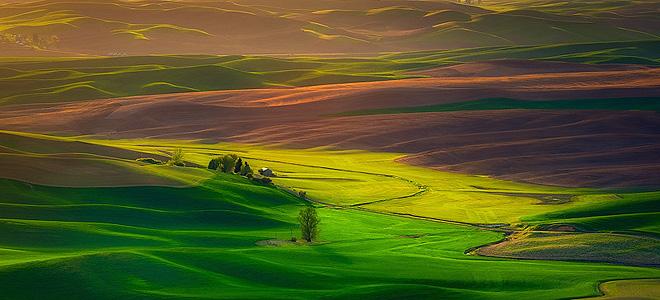 Изумрудные холмы региона Палуз (23 фото)