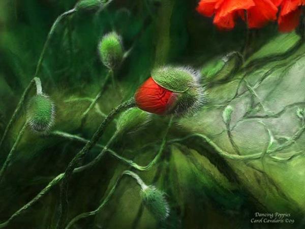 Кэрол Каваларис и ее цифровая живопись (3)