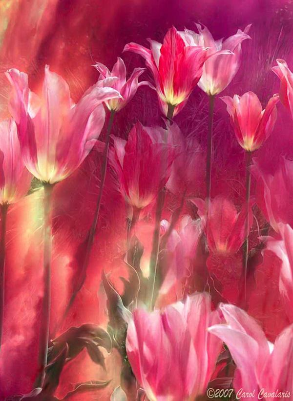 Кэрол Каваларис и ее цифровая живопись (25)