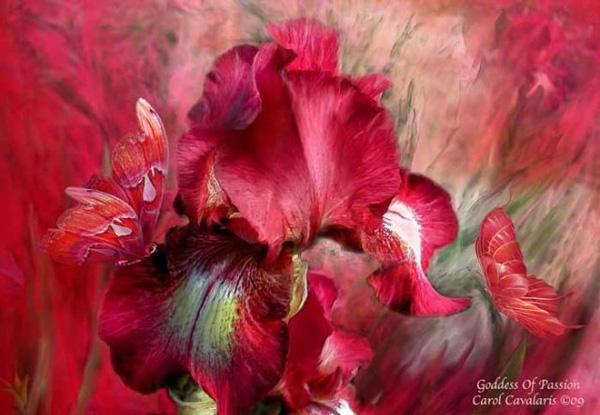 Кэрол Каваларис и ее цифровая живопись (19)