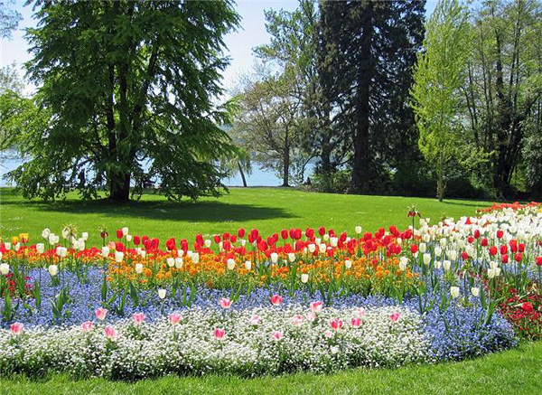 Остров цветов Майнау