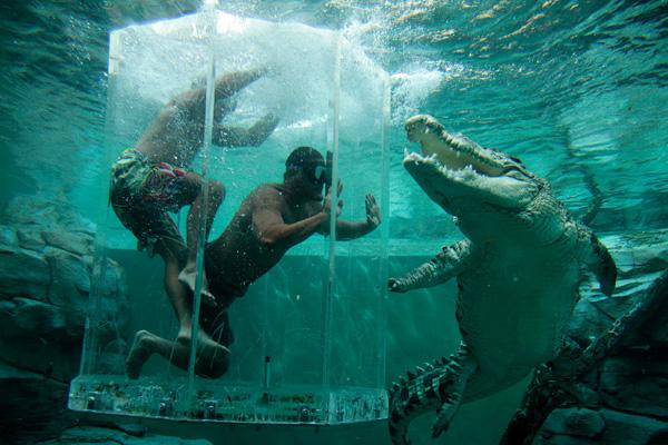 Клетка Смерти в парке Крокодилья бухта
