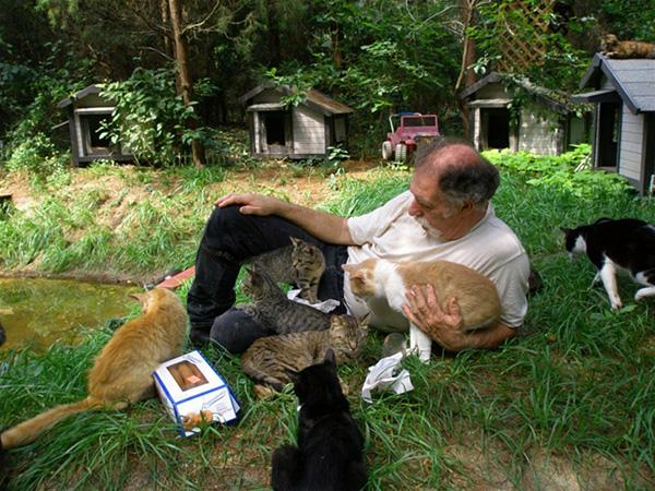 Рай для кошек на ранчо Кабудл