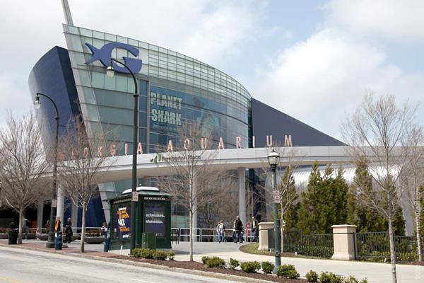 Аквариум Джорджии - самый большой аквариум в мире