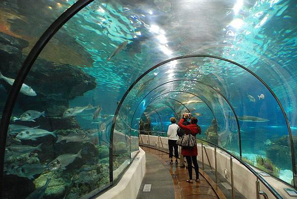 L'Aquarium Barcelona в Барселоне