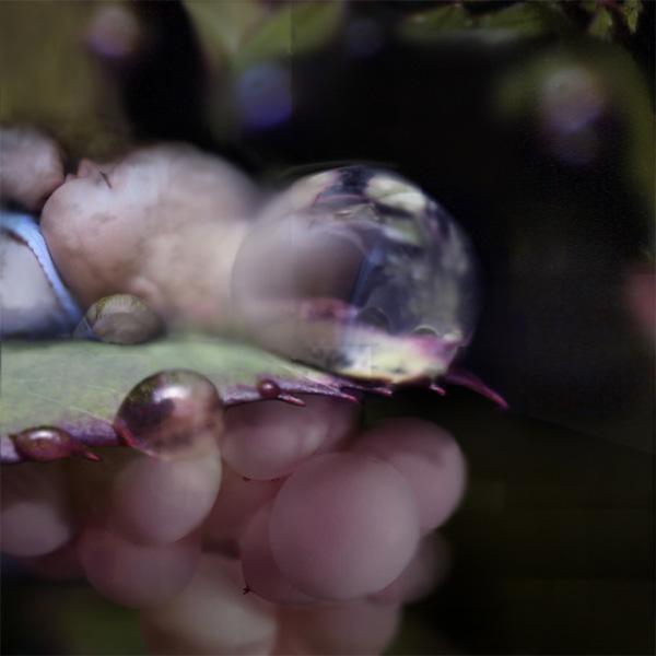 Крис Беренс и его фантастические миры (9)