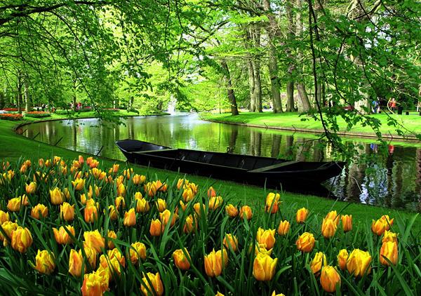 Парк цветов Кейкенхоф в Амстердаме