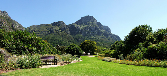 Роскошный сад Кирстенбош в Южной Африке (11 фото)