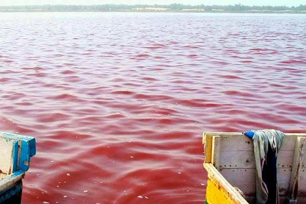 Розовое озеро Ретба в Сенегале