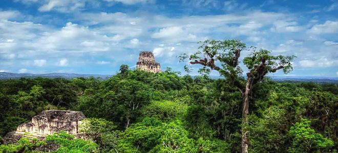 Тикаль — крупнейший город цивилизации майя (9 фото)