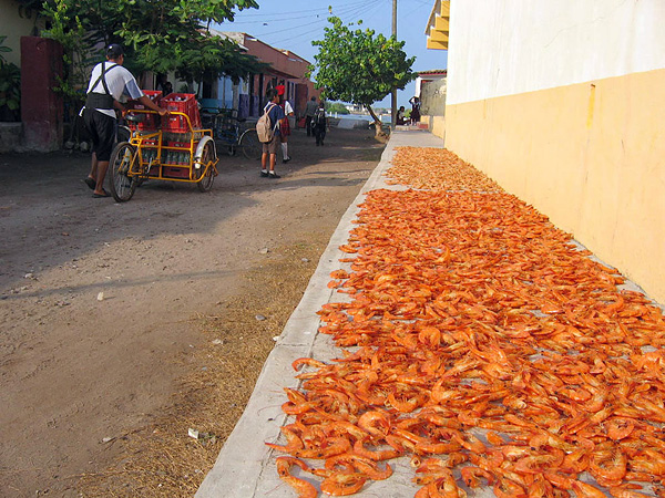 Город-остров Мескальтитан в Мексике  (6)
