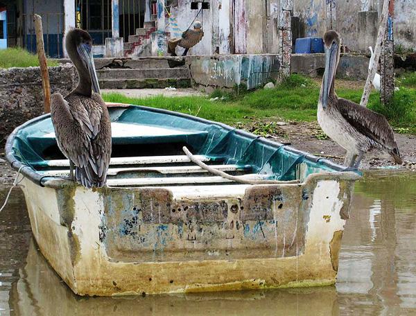 Город-остров Мескальтитан в Мексике  (5)
