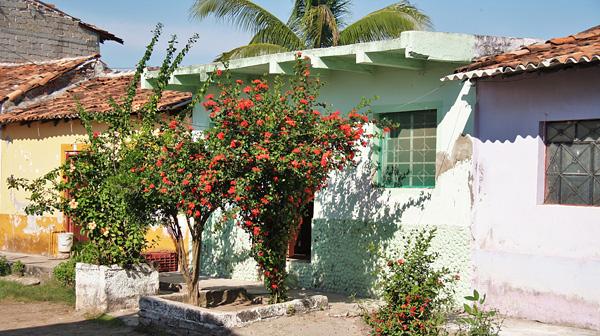 Город-остров Мескальтитан в Мексике  (11)