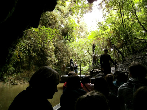 Пещеры светлячков Вайтомо