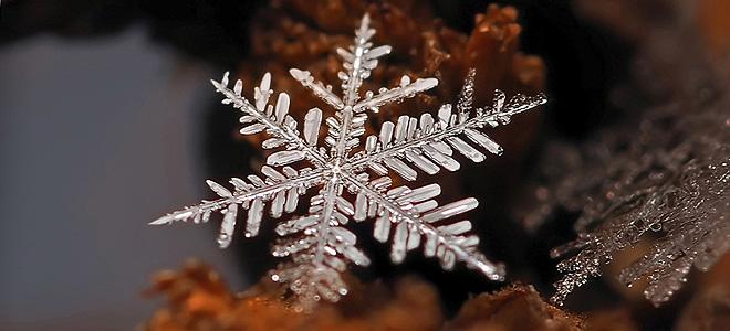 Красивые снежинки Андрея Осокина — 2 (9 фото)