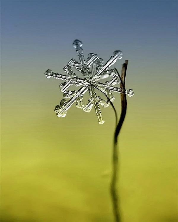 Фотограф Андрей Осокин и красота снежинок