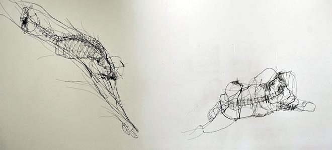 Дэвид Оливейра и его скульптуры-рисунки (9 фото)