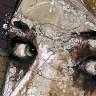 Флориан Николь и его «небрежные» картины (21 фото)