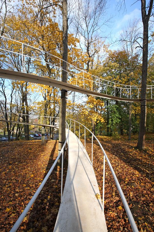 Необычный мост Путь в лесу