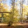 Необычный мост «Путь в лесу» (9 фото)