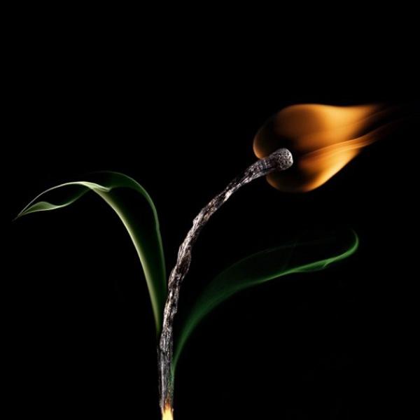Станислав Аристов и его красивые сожженные спички