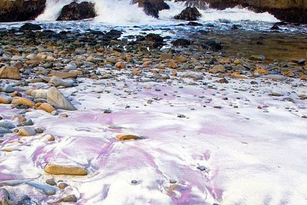 Фиолетовый пляж Пфайффер Бич
