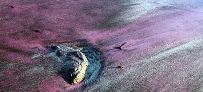 Фиолетовый пляж Пфайффер Бич в Калифорнии (9 фото)
