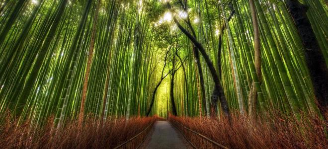 Топ-7: Самые красивые тропы мира