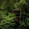 Финка Беллависта — экопоселение на деревьях (13 фото)