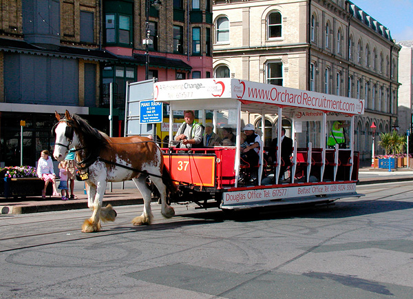 Конка Дугласа - трамвай на конной тяге