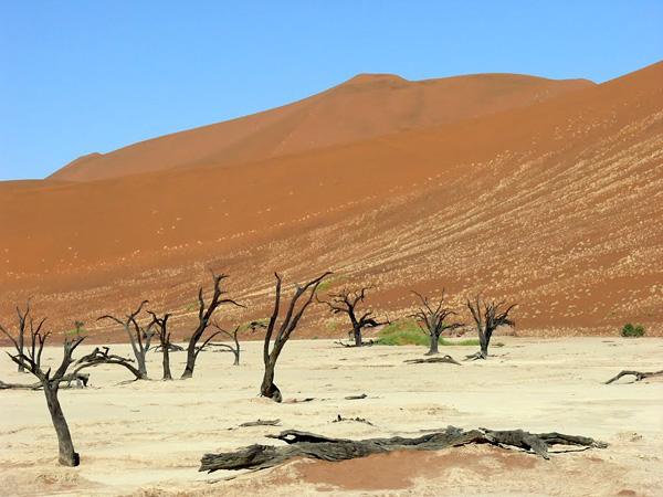 Мертвая долина в Намибии