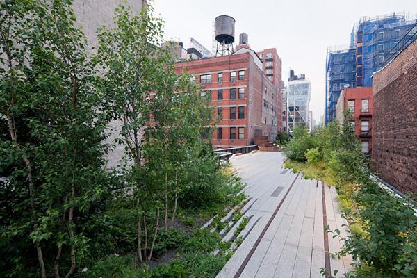 Необычный парк Хай-Лайн в Манхэттене