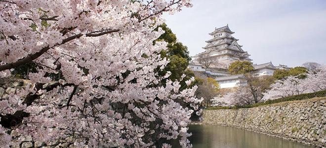 Замок Химэдзи в Японии (9 фото)
