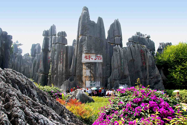 stone-forest-world-geopark