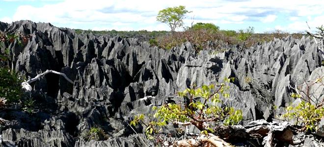 Каменные леса Цинжи-дю-Бемараха