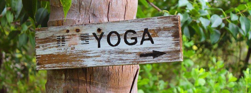 yoga-tur4