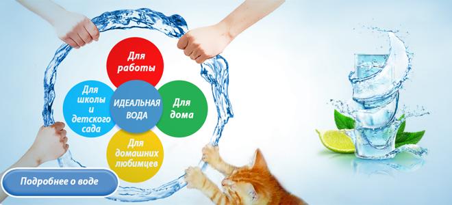 Питьевая вода: в офисы, школы, на дом