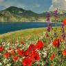 Крым в мае